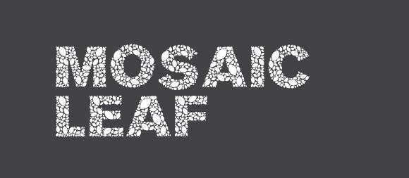 13 Mosaic-leaf