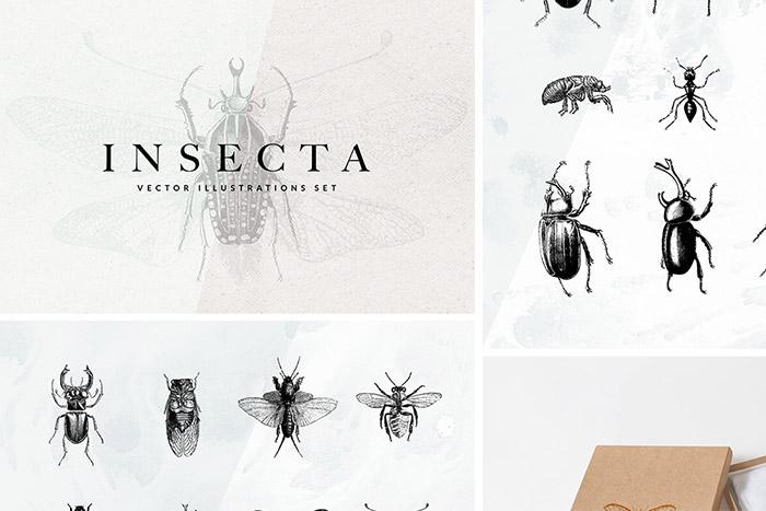 Rysunkowe insekty