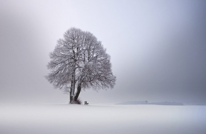 Winter light © Franz Schumacher