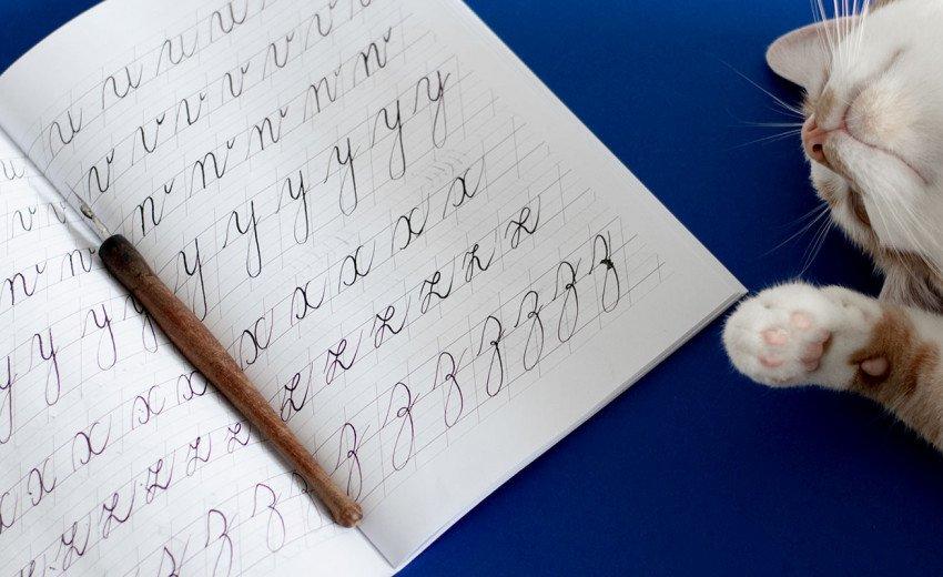 """Okładka artykułu Nikt nie mówił, że będzie łatwo — Recenzja zeszytu ćwiczeń do kaligrafii """"Piękna Litera. Copperplate script"""""""