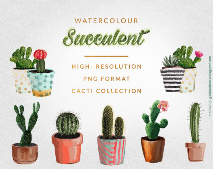 freebies-watercolor-succulents-cactus-png