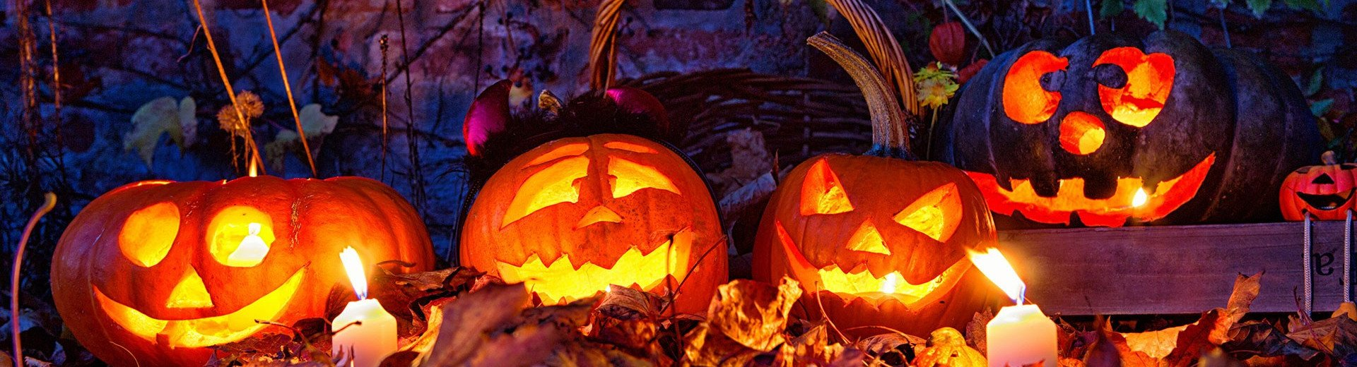 Okładka artykułu Darmowe materiały dla projektantów — Edycja na Halloween