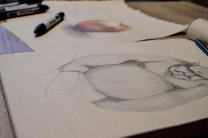droga-od-jablka-do-trola-czyli-recenzja-kursu-rysunku-od-podstaw-na-eduweb-7