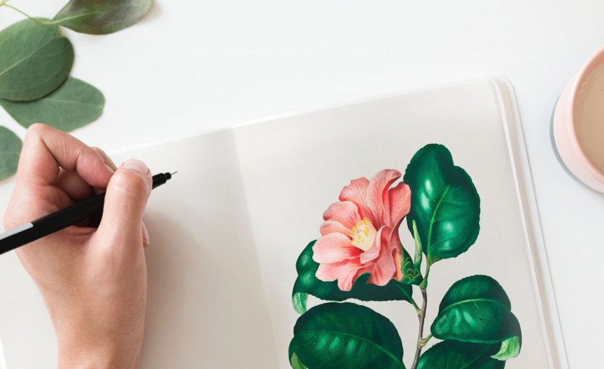 Okładka artykułu Co nowego dla projektantów? — Ciekawe linki, lipiec 2018