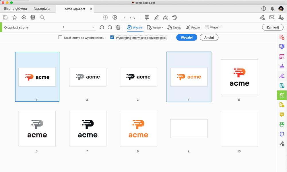 Wydzielenie plików pdf