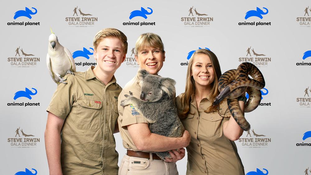 Rebranding Animal Planet