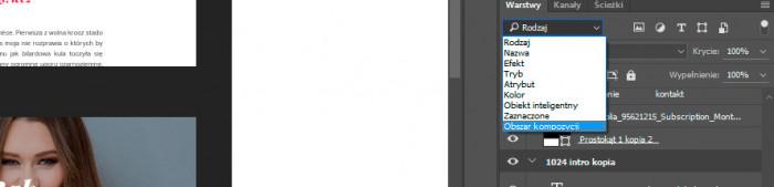 filtrowanie-po-obszarze-kompozycji