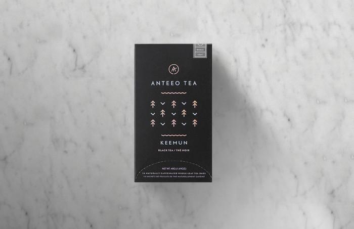 03-anteo1