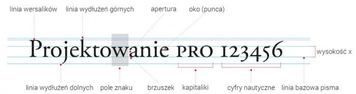 zrzut-projektowanie-(1)