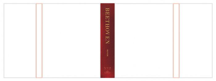 rys.11. Projekt typograficzny grzbietu okładki lub obwoluty książki w układzie pionowym