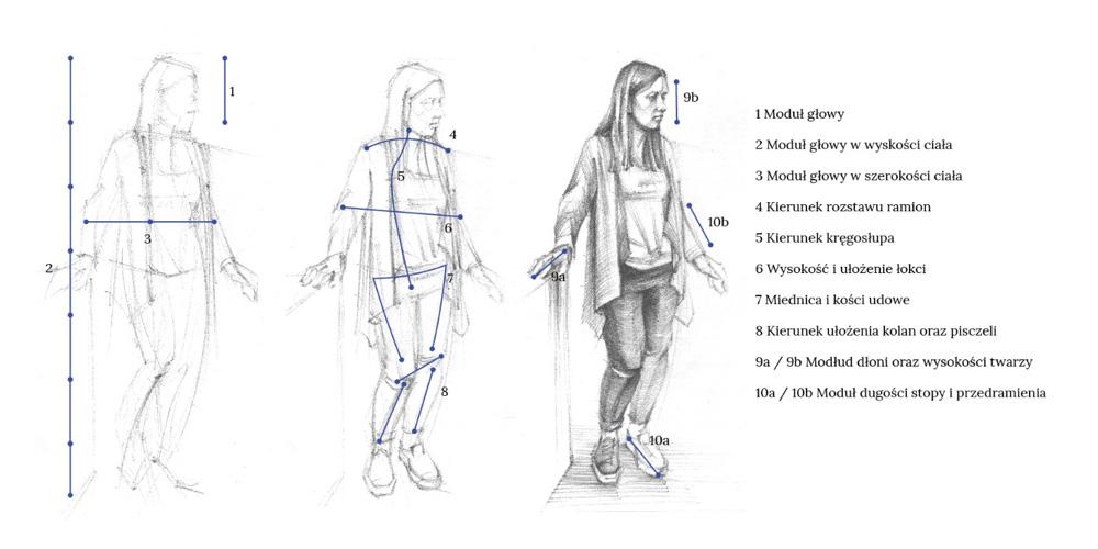 Rysunek ciała człowieka - proporcje