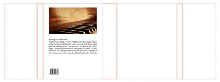 rys.8.Typografia na tylnej płaszczyźnie obwoluty lub okładki