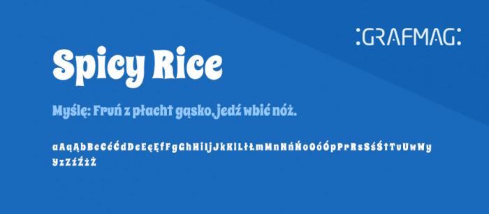 Spicy-Rice