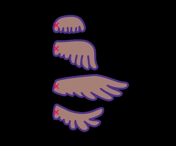 Skrzydła sowy