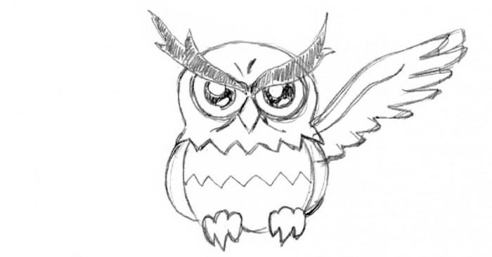 owl_00