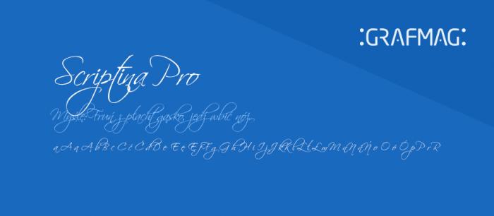 Scriptina-Pro