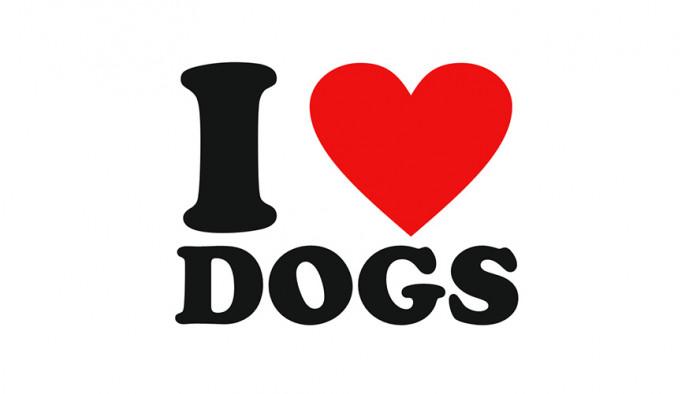 Źródło: lovehearttshirts.com http://www.lovehearttshirts.com/shop/i-love-dogs-t-shirt