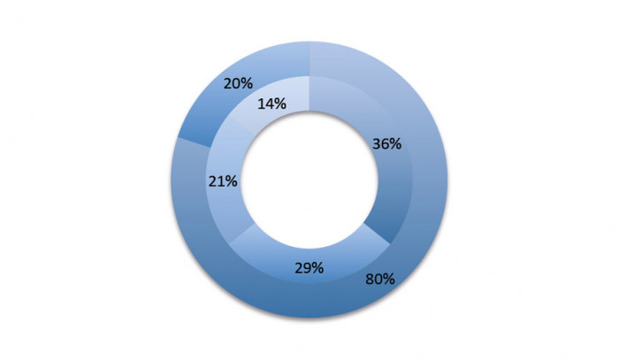 Model wykresu kołowego pierścieniowego