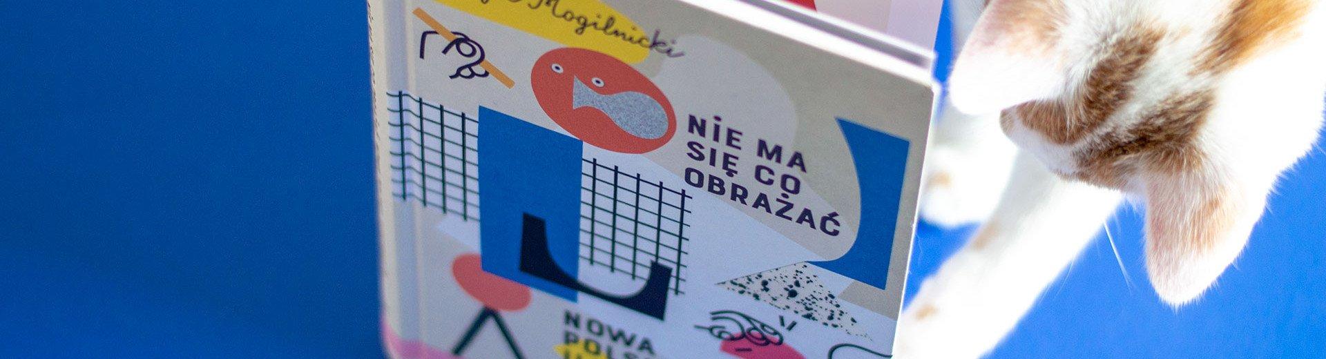 """Okładka artykułu """"Nie ma się co obrażać. Nowa polska ilustracja"""" — Recenzja książki Patryka Mogilnickiego"""