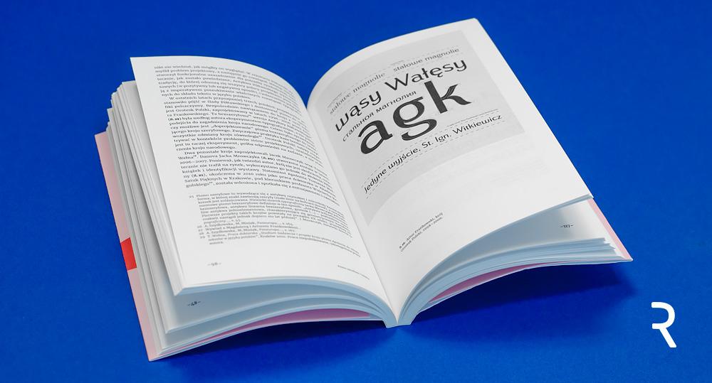 Od solidarycy do TypoPolo. Typografia a tożsamości zbiorowe w Polsce po roku 1989